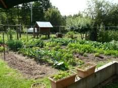 View from garden vegi prep station