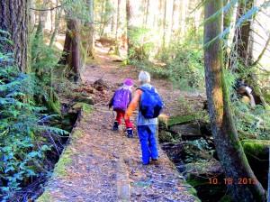 Old bridge through forest.  Simplicity Parenting!